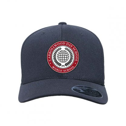 Team-365-by-Flexfit-Adult-Cool-Dry-Mini-Pique-Performance-Cap-in-Black-CDS-Globe-Logo